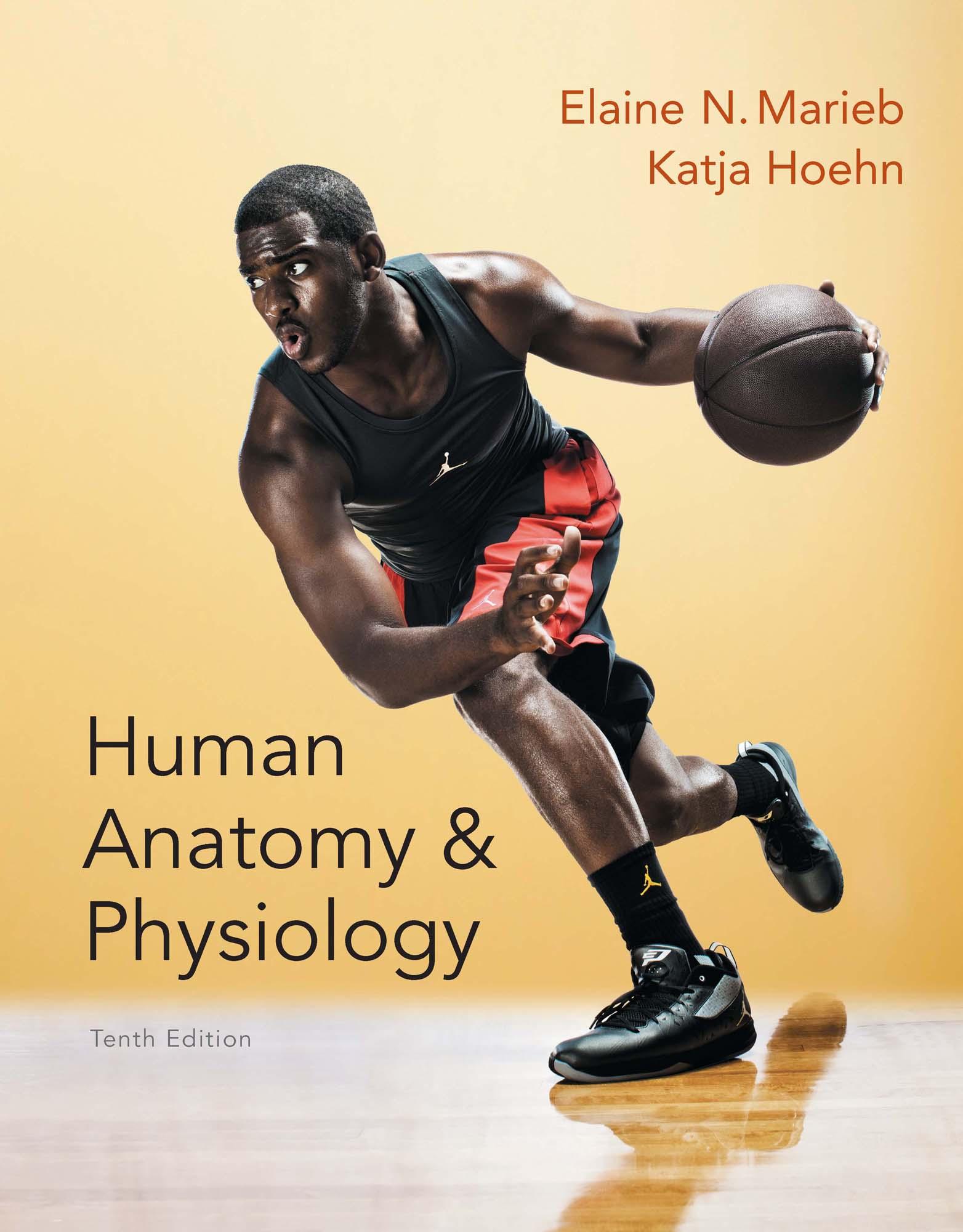 Human Anatomy & Physiology 9780321927040 | 9780134017808 RedShelf