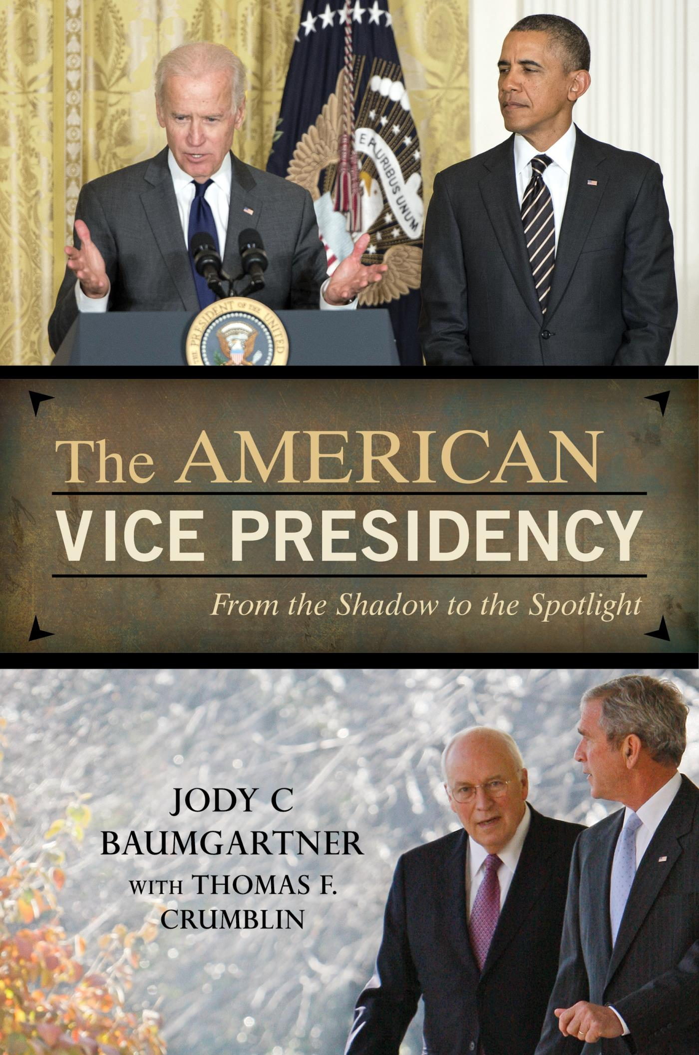 The American Vice Presidency
