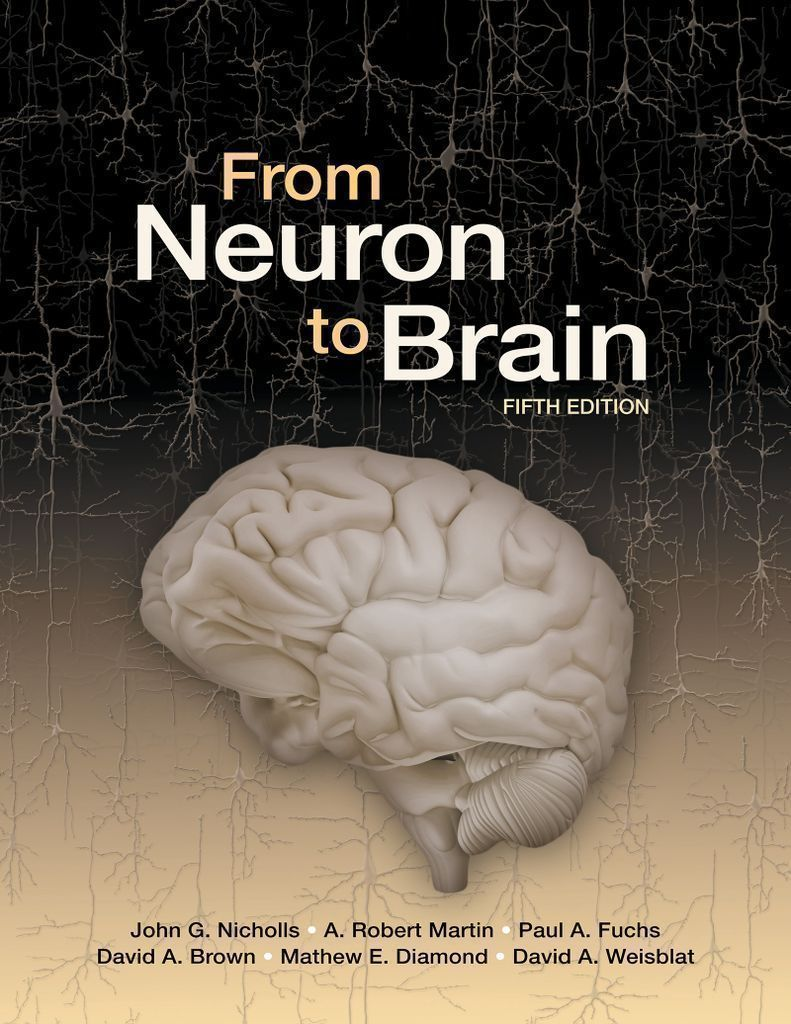 Ebook rental 180 days from neuron to brain sinauer associates is ebook rental 180 days from neuron to brain sinauer associates is an imprint of list price fandeluxe Images