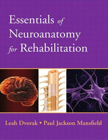 Essentials of Neuroanatomy for Rehabilitation
