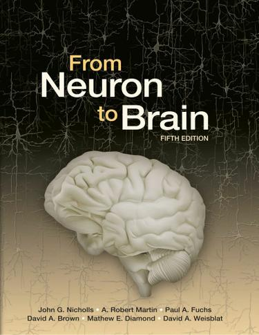 From Neuron to Brain 5e
