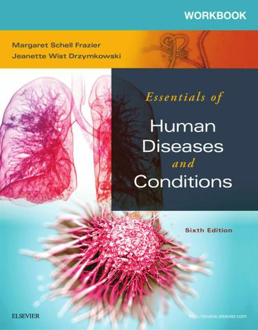 Workbook for Essentials of Human Diseases and Conditions - E-Book