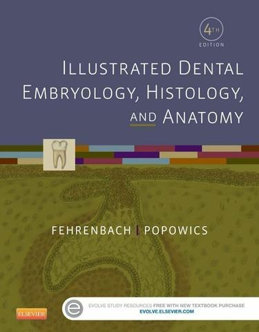 Illustrated Dental Embryology, Histology, and Anatomy - E-Book